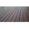 Tarima sintetica Timbertech Earthwood Evolution Tropical de color Pacific Walnut de 2440x138x24 mm.